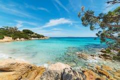 Clear water in Capriccioli beach Royalty Free Stock Photos