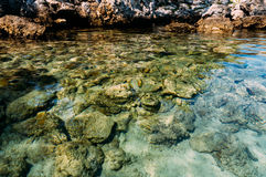 Clear water Stock Images