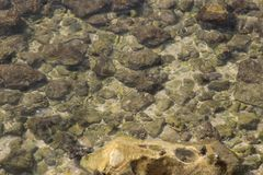 Clear water. Clean bottom with exposed stones Royalty Free Stock Images