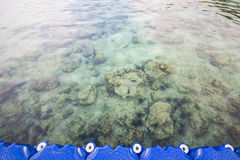 Clear water at coral beach island Stock Photos
