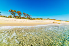 Clear water in Costa Rei Stock Photography