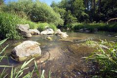 Clear water in fast small river quickly runs between stones. Landscape with clear water in fast small river quickly runs between stones in summer day. Vertical Stock Photo