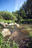 Clear water in fast small river quickly runs between stones Royalty Free Stock Photos