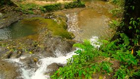 Clear water flows down cascades of waterall rapids in tropical rainforest. Crystal clear water flows down a lov cascade of waterall rapids in a tropical stock footage