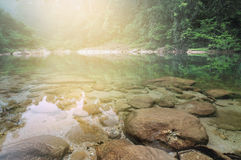 Clear water Foggy Forest Pebble Stones Sandy Rocky River Stock Photos