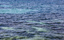 Clear water of Ibiza Royalty Free Stock Images