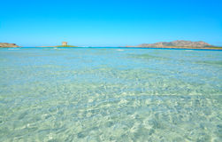Clear water in La Pelosa beach. Sardinia Stock Images