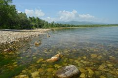Rocks at the bottom through the water of lake Baikal Stock Photos