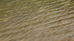 Clear water in the lake stock video footage