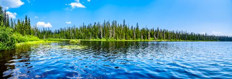 McGillivray Lake near Sun Peaks in BC, Canada royalty free stock photography