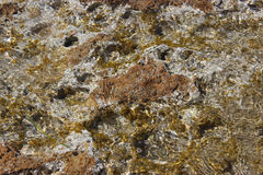 Clear water of the Mediterranean Sea Royalty Free Stock Images