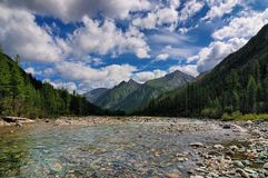 Clear water of a mountain river Stock Photography
