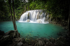 Clear water pond and silky waterfall in forest Royalty Free Stock Photo