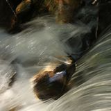 Clear water of a river flowing over a rock Royalty Free Stock Photos