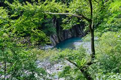 Clear water of a River and Forest. A lucid stream in Taroko National Park, Clear water of a River and Forest, Hualien, Taiwan stock photo