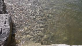 Clear water and rock bottom. stock footage