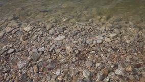 Clear water and rock bottom. stock video
