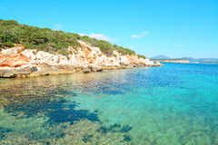 Clear water and rocky shore Royalty Free Stock Photography