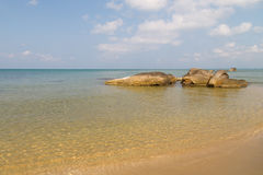 Clear water on the sandy beach Stock Photography