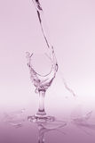 Clear water spill from a broken wine glass on colour background Stock Photos