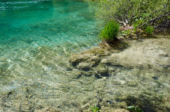 Clear Water. Spring azure limpid transparent lake. Plitvice, Croatia Royalty Free Stock Photography