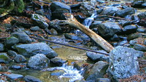 Clear water stream stock video