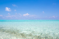 Clear water tropical nature background holiday luxury resort island atoll about coral reef freedom snorkel adventure Royalty Free Stock Photos