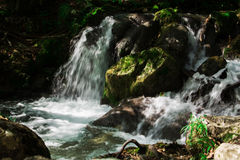 Clear waterfall in green forest, beautiful nature landscape Royalty Free Stock Images