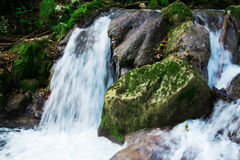 Clear waterfall in green forest, beautiful nature landscape Royalty Free Stock Photography