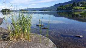 Clear waters in lake Stock Photo