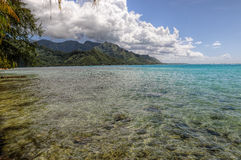 Clear Waters in Moorea.French Polynesia Stock Photo