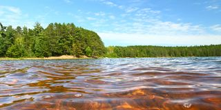 Clear Waters of Northwoods Wisconsin Stock Image