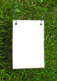 Clear white paper on grass. Clear white paper on green grass for text writing. Photo frame Stock Images
