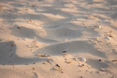 Clear white sand in the morning light. Empty beach. Tropical travel concept. Seashore at sunrise. Summer beach in sunlight. Peaceful place background. Sand stock photography