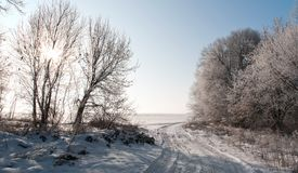 Clear winter morning Stock Photography