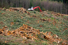 Clearcut logging in the Pacific Northwest. Clearcut Logging In Pacific Northwest in Washington state.  A log debris pile is in the foreground with a loader up on Stock Photo