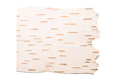 The cleared birch bark Stock Photo