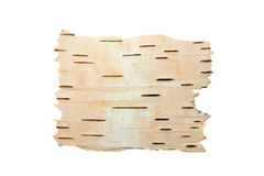 The cleared birch bark. The cleared bark of a birch photographed on a white background Stock Image