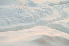 Cleared snowy footpath after heavy snowstorm. Traces of wild steppe birds on the snow. Stock Photos