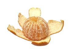The cleared tangerine Stock Images