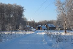 Cleared wide road winter drive to private houses in the Siberian village among the snowdrifts through the forest on a clear winter. Cleared wide road winter royalty free stock image
