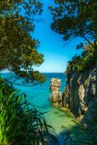 Clearing in abel tasman national park, new zealand royalty free stock image