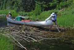 Clearing the Beaver Dam Stock Photos