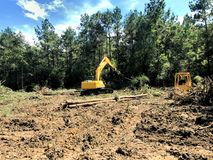 Clearing land and logging timber Stock Image