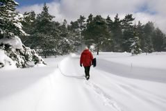 Clearing Snow. Setting off to clear a forest lane covered with virgin snow stock photography