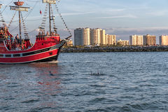 CLEARWATER,佛罗里达- 2015年5月05日:海豚和海盗赎金轮渡在Clearwater 风险轻率冒险日落时间 免版税图库摄影