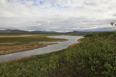 Clearwater Creek Royalty Free Stock Photo