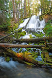 Clearwater Falls Royalty Free Stock Photography