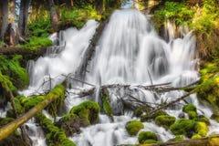 Clearwater Falls Royaltyfri Fotografi