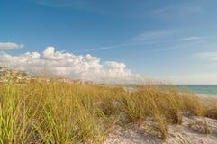 clearwater florida пляжа Стоковая Фотография